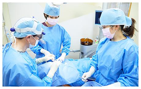 専門医と精密機器の融合